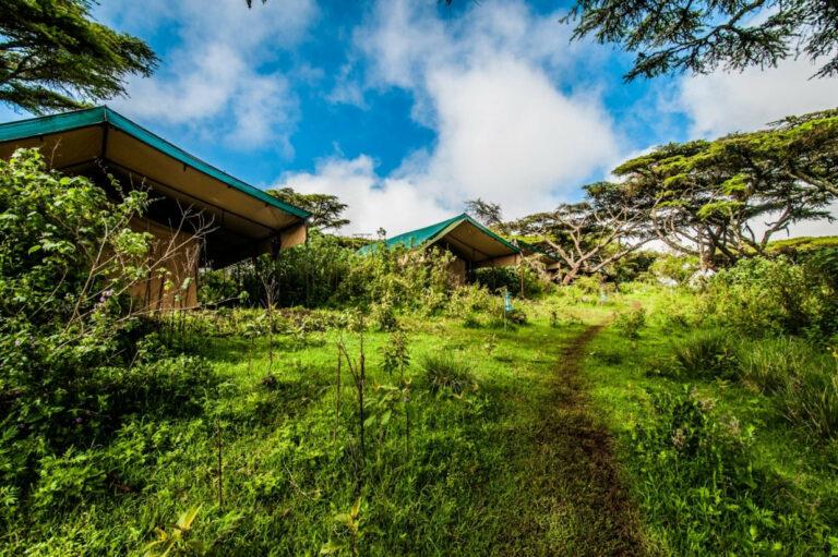 Ang'ata Ngorongoro Camp