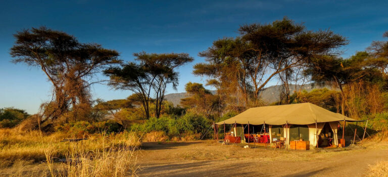 Camps & Lodges im Lake Manyara Nationalpark: Lemala Manyara