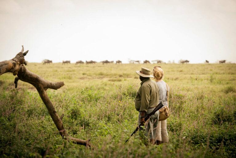 Tansania Safari Namiri Ebene Serengeti
