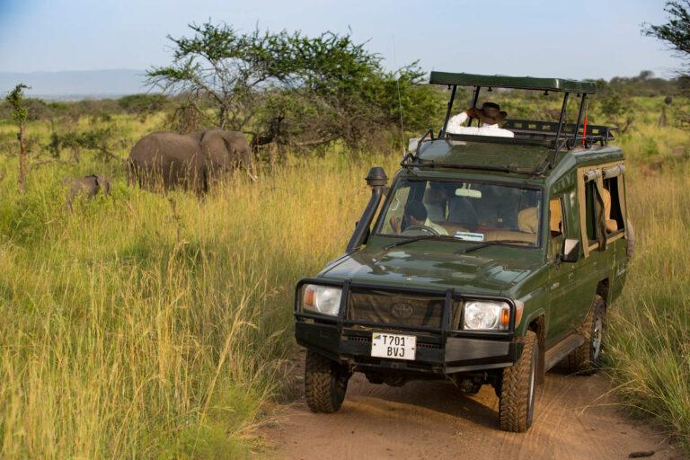 Tansania Safari Serengeti Geländewagen