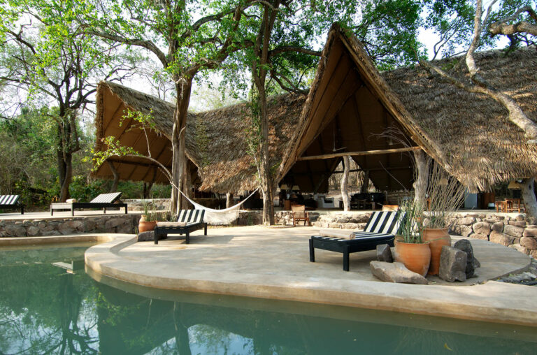 Camps & Lodges in der Selous Game Reserve: Kiba Point