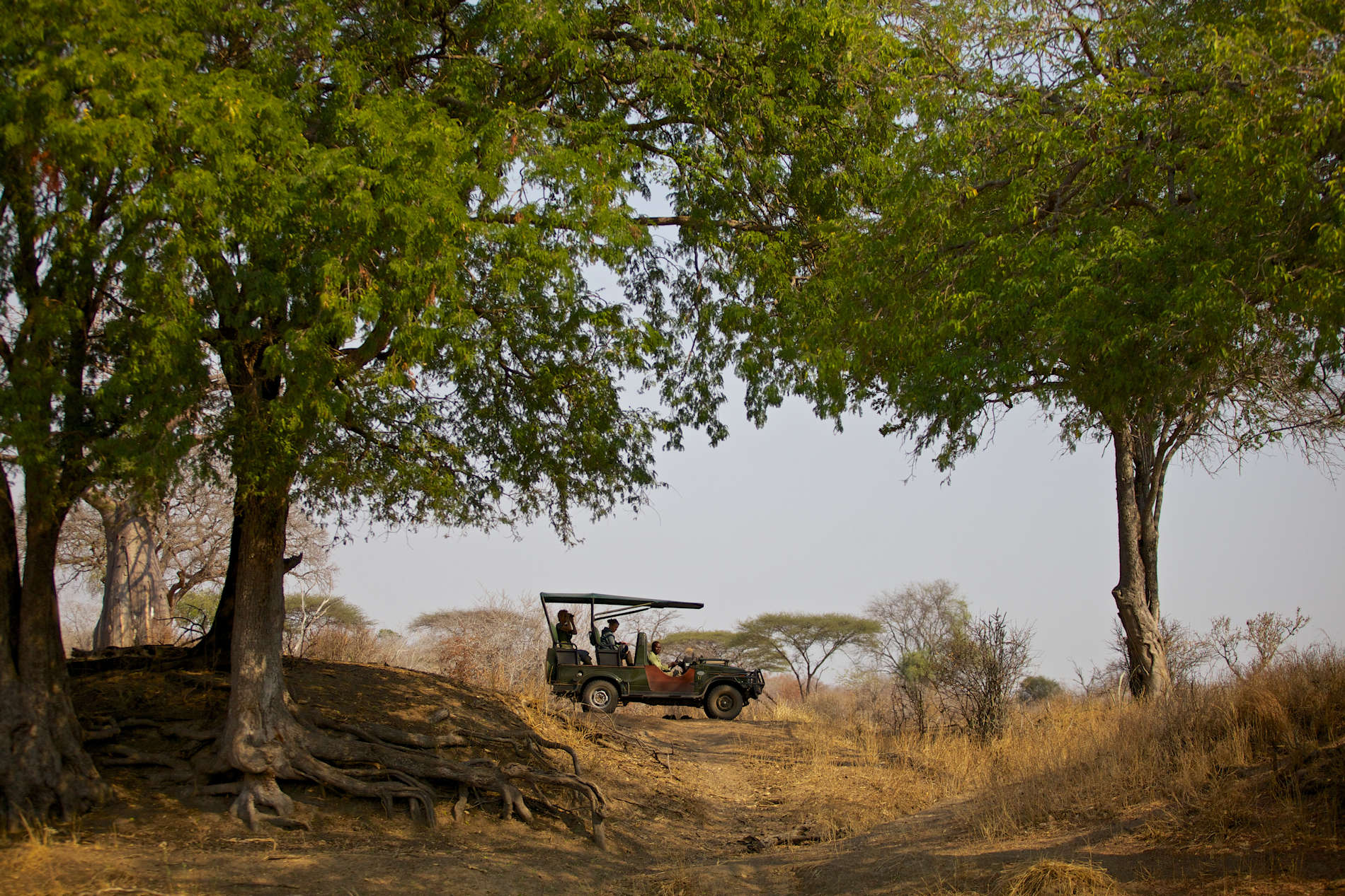 Ruaha River Lodge copyright Niels van Gijn