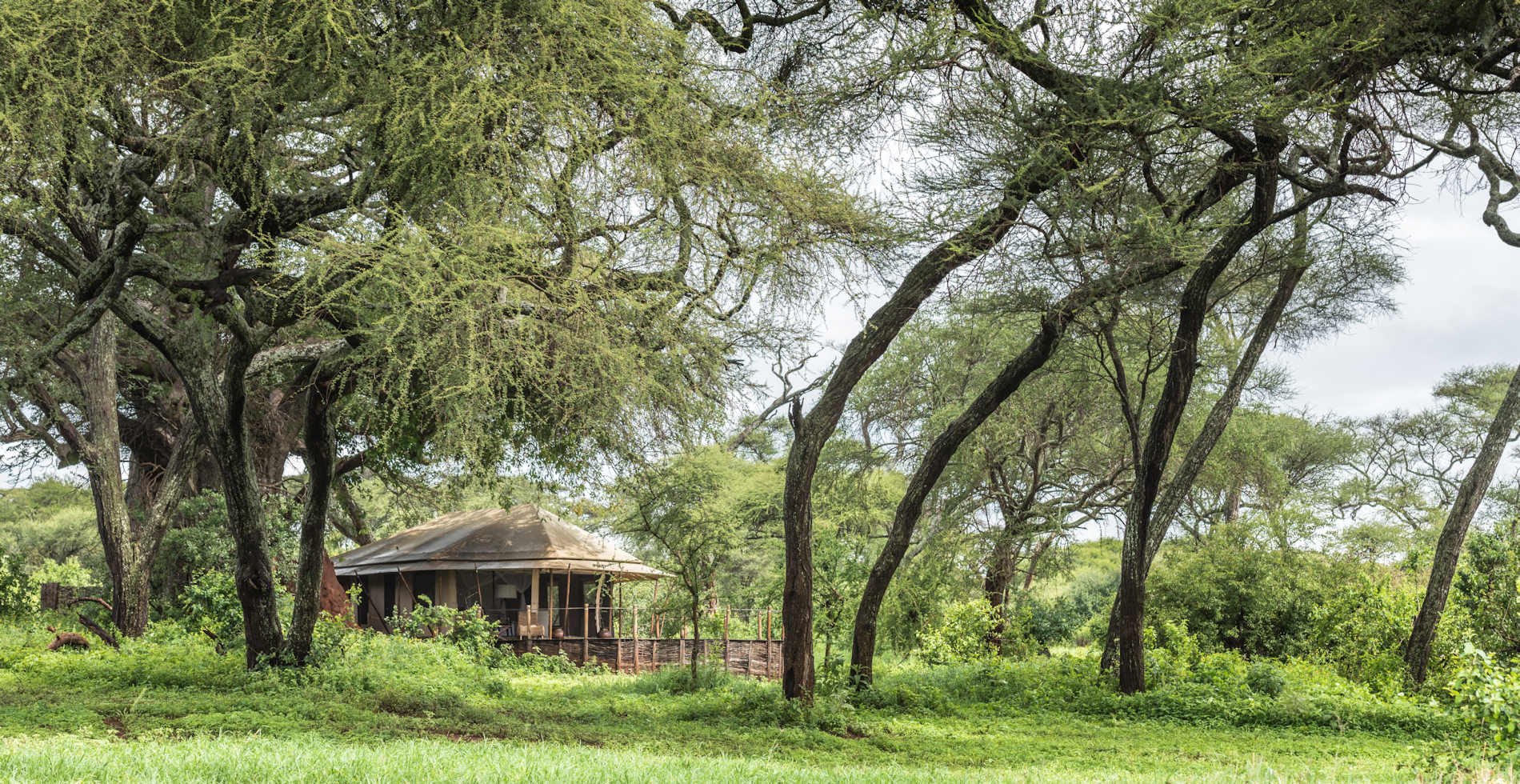Swala Camp Tangarire Tansania