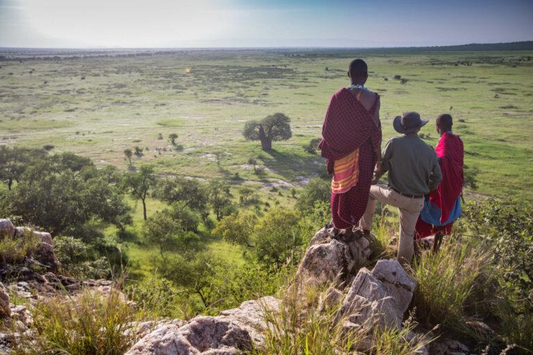Tansania Safari Tarangire Treetops