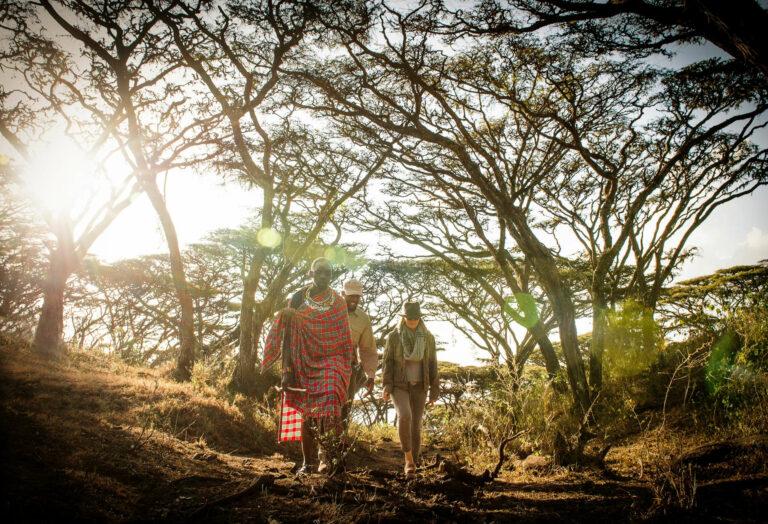 Tansania Safari Entamanu