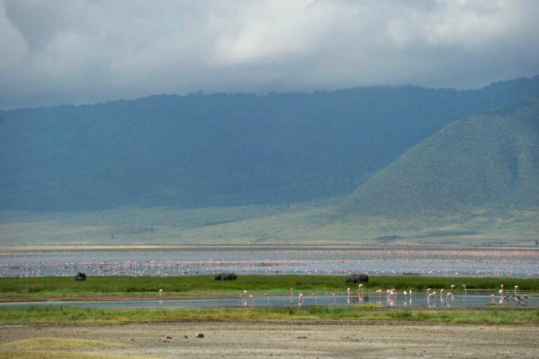 Camps & Lodges am Ngorongoro Krater: Entamanu Ngorongoro Camp