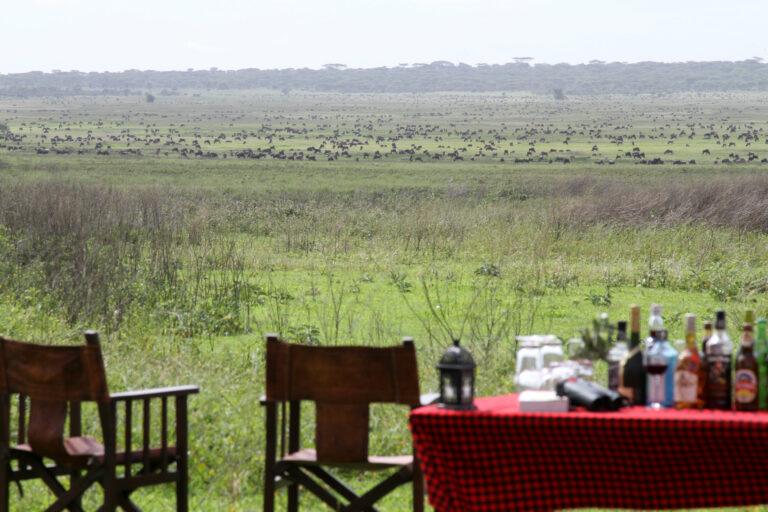 Camps & Lodges in der Serengeti: Kimondo Camp
