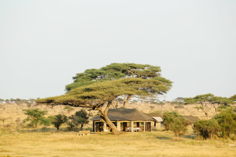 Tansania Lodges und Camps