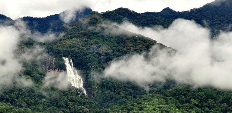 Udzungwa Mountains Nationalpark