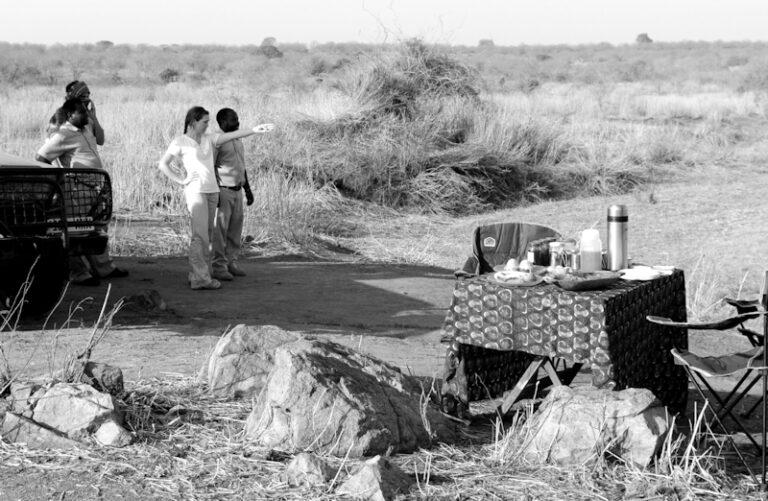 Camps & Lodges im Ruaha Nationalpark: Mwagusi Camp