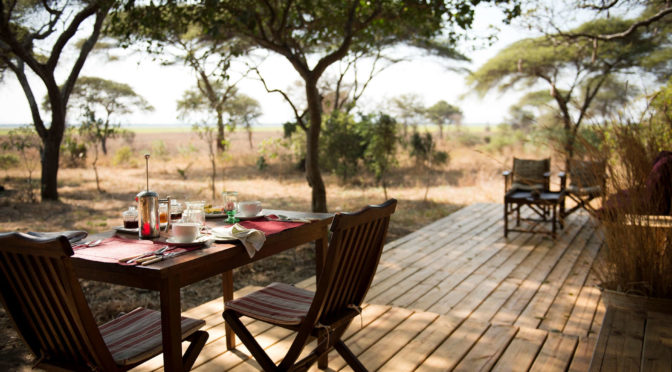 12 Tage Big Game Safari Flugsafari