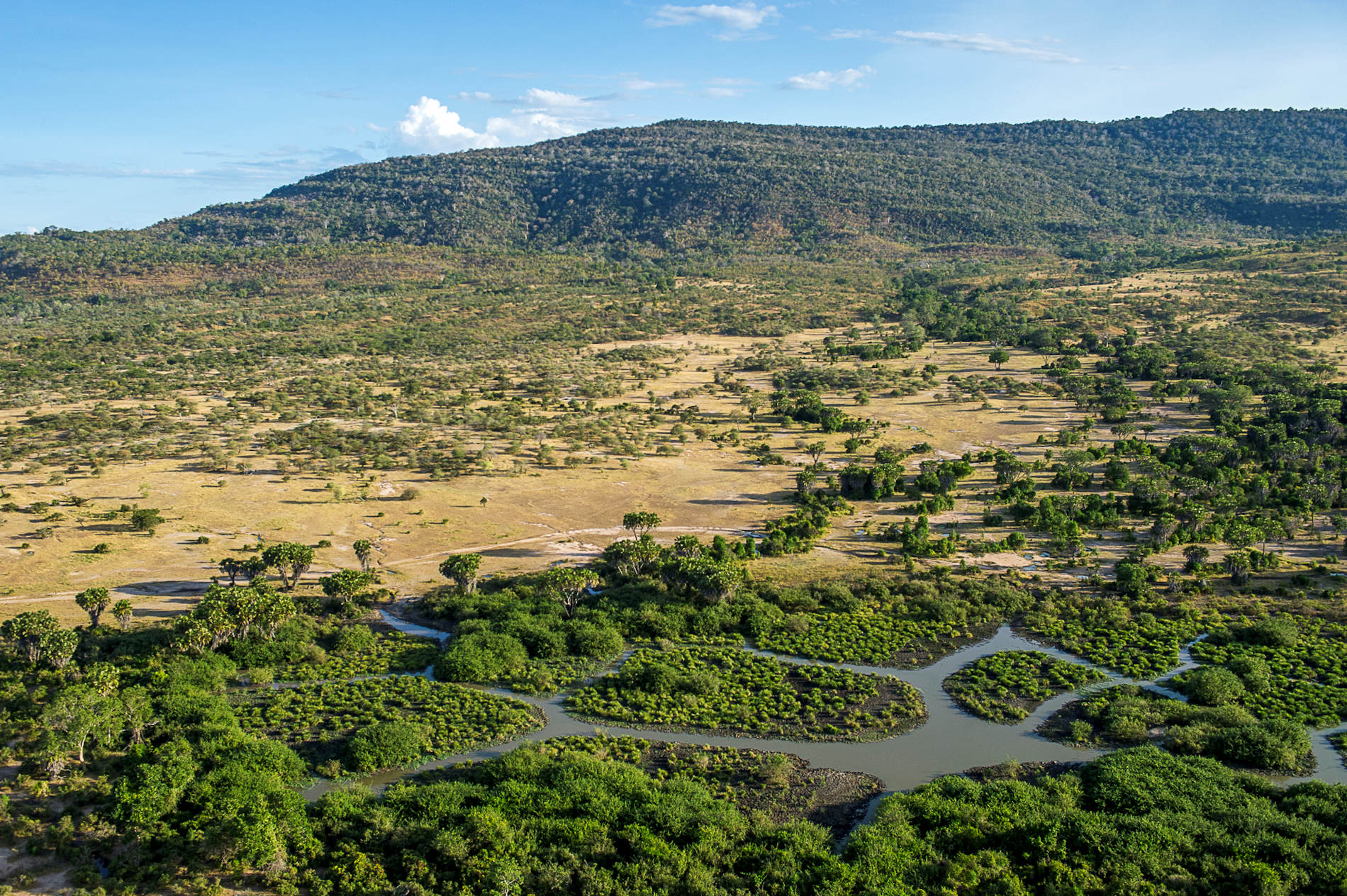 Roho ya Camp Asilia Africa Selous From The Air RR © Robert J. Ross