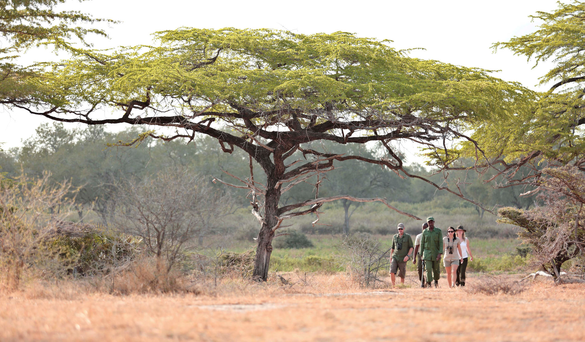 Guided Walks Roho ya Camp Selous Tanzania Asilia Africa