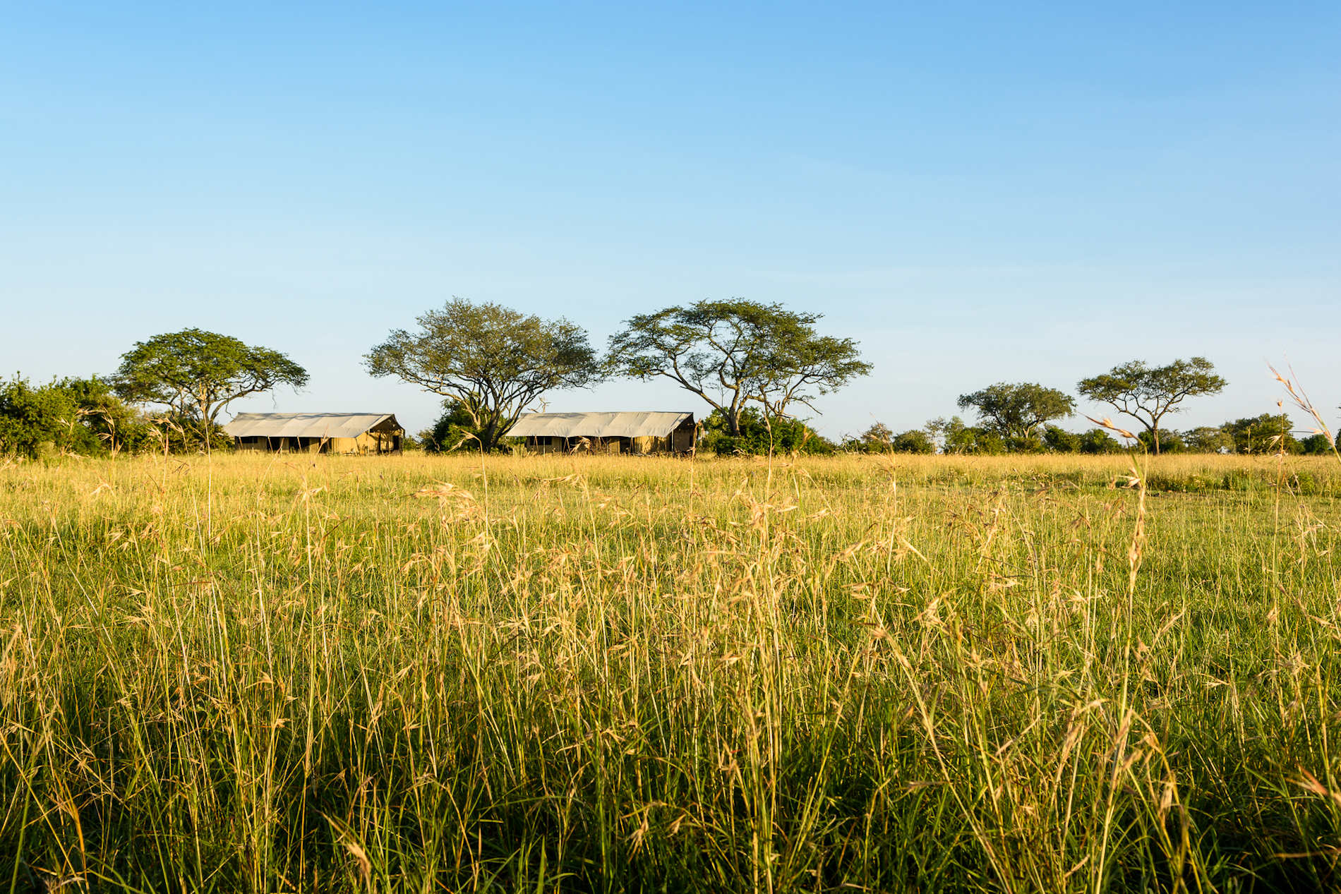 Singita Explore Mobile Tented2019 (5)