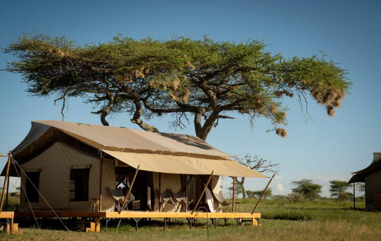 © Siringit Serengeti